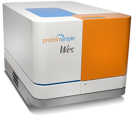 Protein Simple Wes